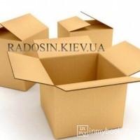 radosin  [РАДОСИНЬ]